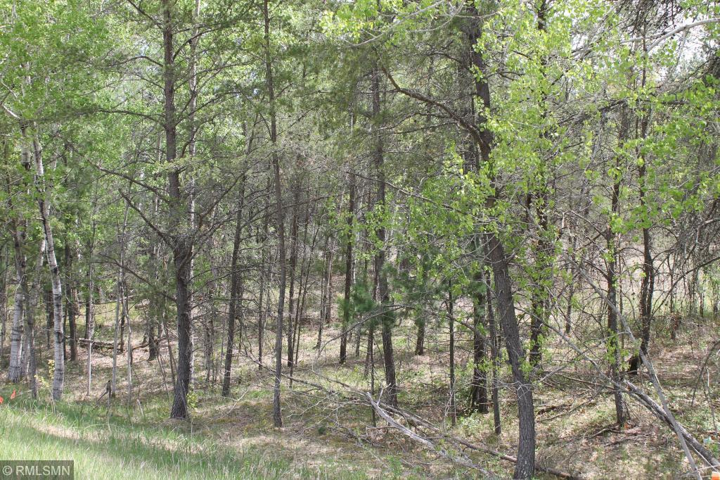XXX County Rd 29 - Lot 15 Road Property Photo - Nisswa, MN real estate listing