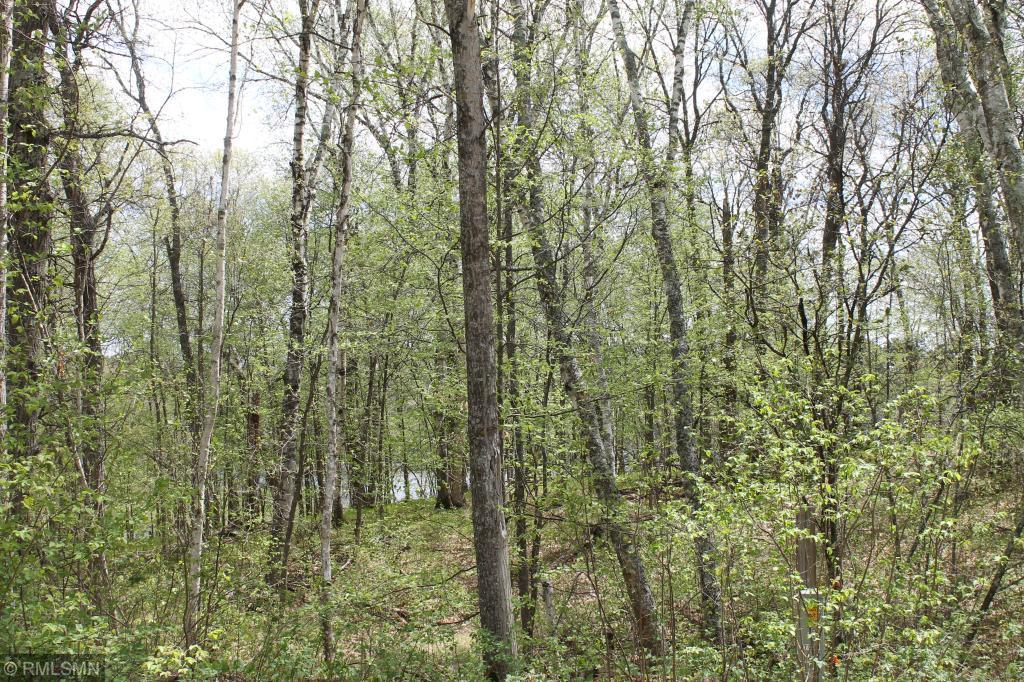 XXX Fawn Forest Lot 11 Road Property Photo - Nisswa, MN real estate listing