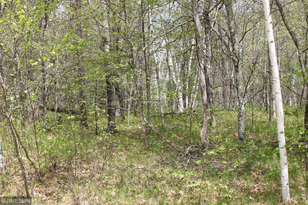 XXX Fawn Forest Lot 12 Property Photo - Nisswa, MN real estate listing