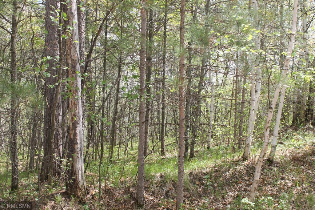 XXX Fawn Forest - Lot 13 Road Property Photo - Nisswa, MN real estate listing