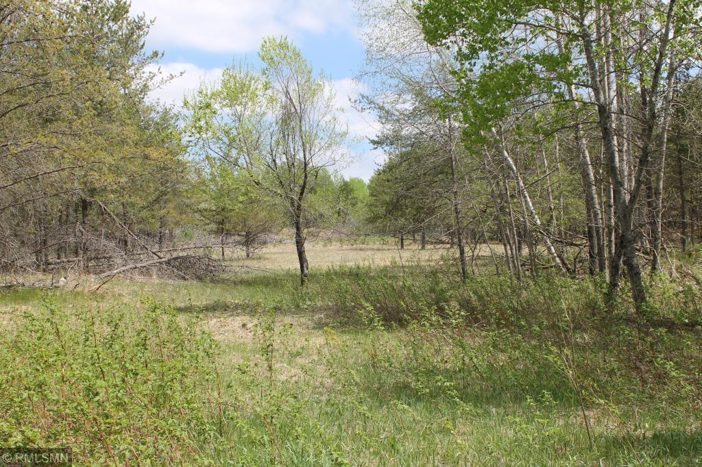 XXX Fawn Forest Lot 14 Road Property Photo - Nisswa, MN real estate listing