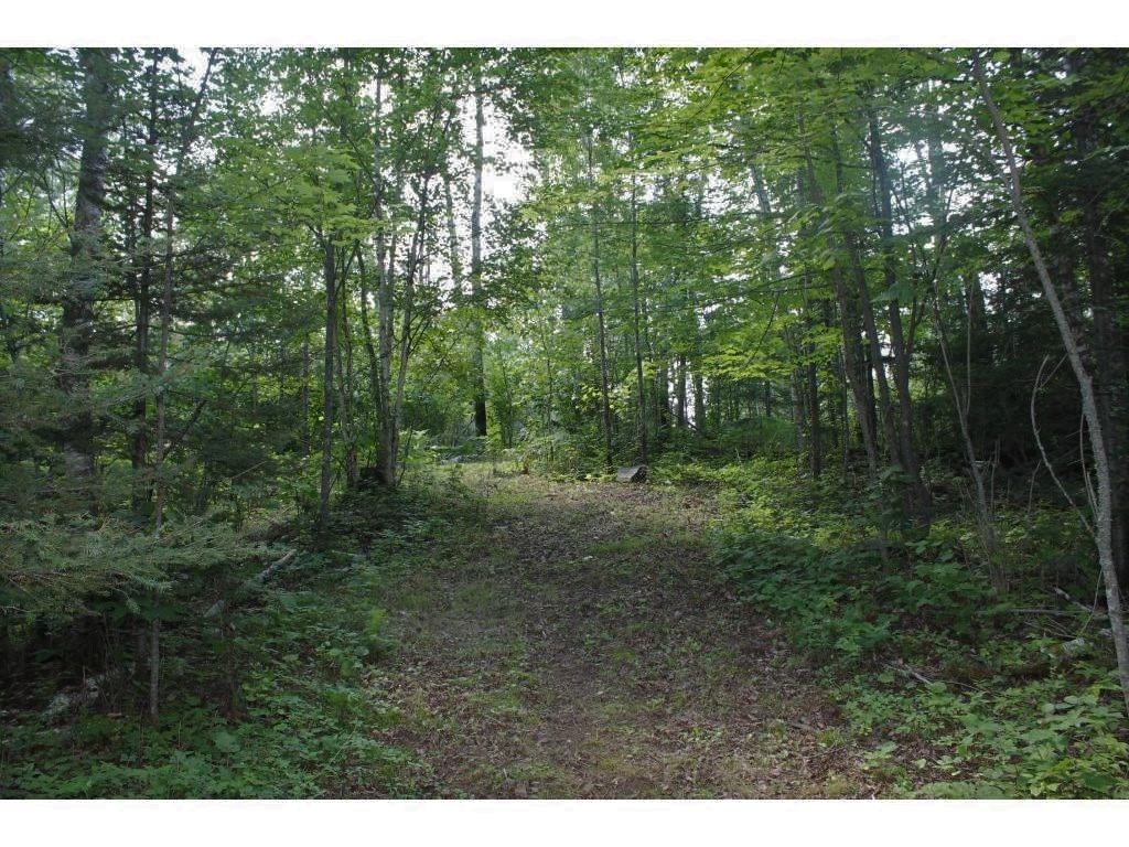 628 Osprey Road Property Photo - Ely, MN real estate listing