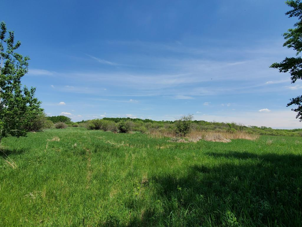 xxx Clear Lake Road Property Photo - Albany, MN real estate listing