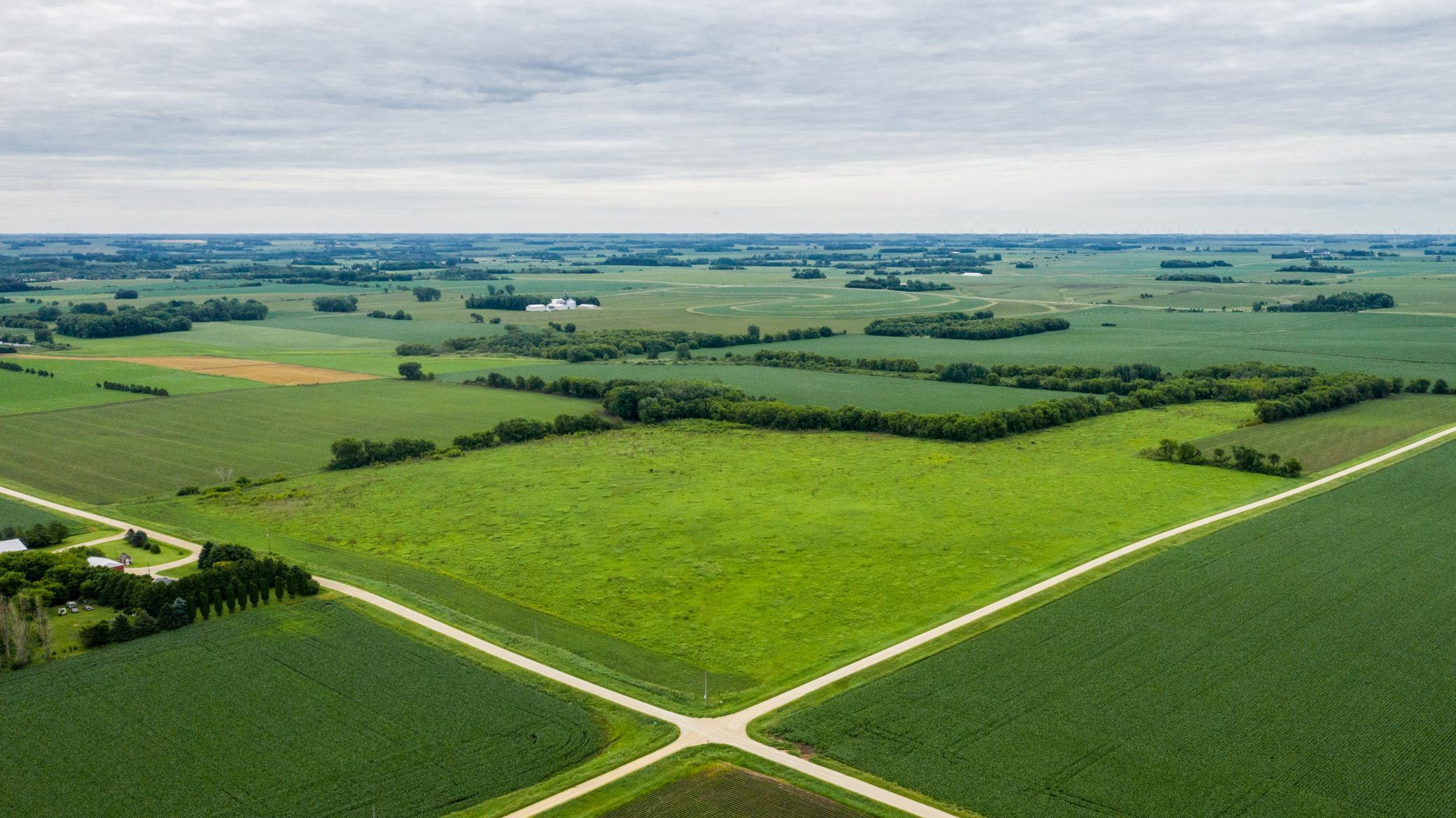 TBD 720th Street - Hayfield Property Photo - Vernon Twp, MN real estate listing