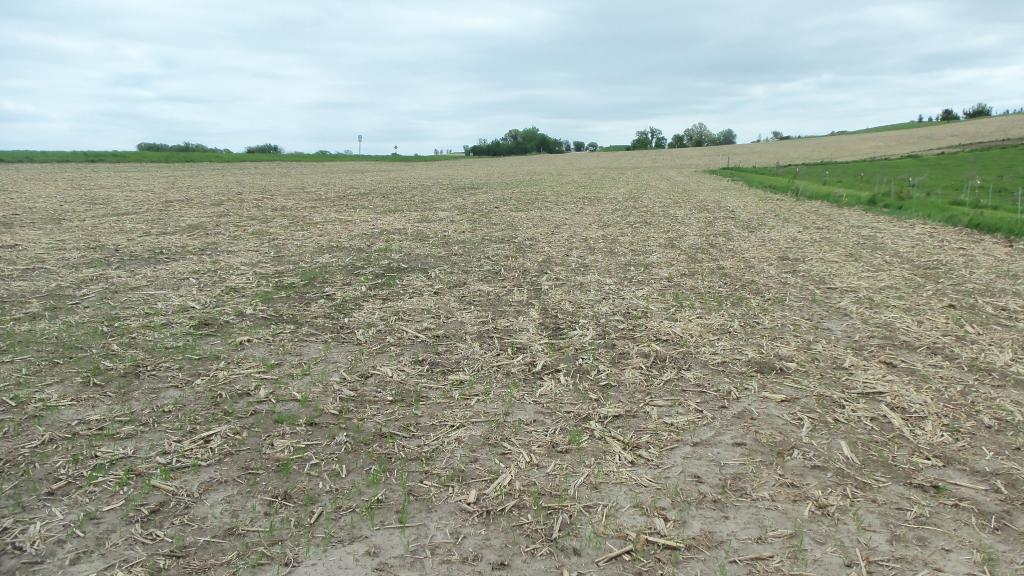 LOT 8 560TH AVE Property Photo - Prescott, WI real estate listing
