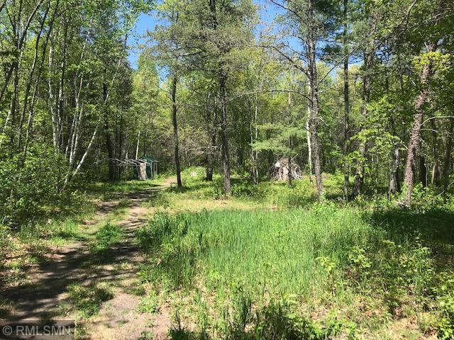 XXX S Winnie Road NE Property Photo - Bena, MN real estate listing