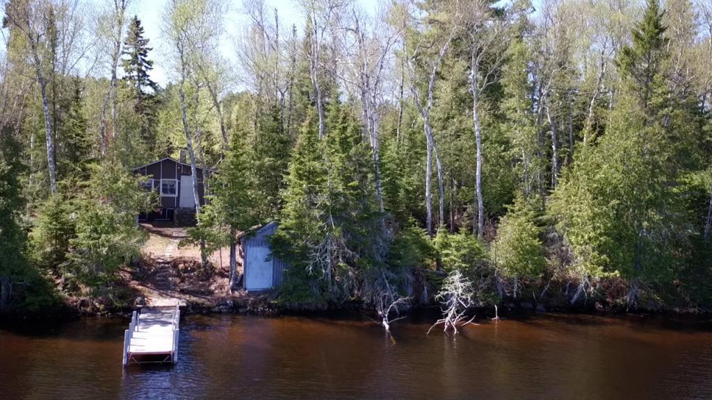 5721 Pine Island Property Photo - Breitung Twp, MN real estate listing