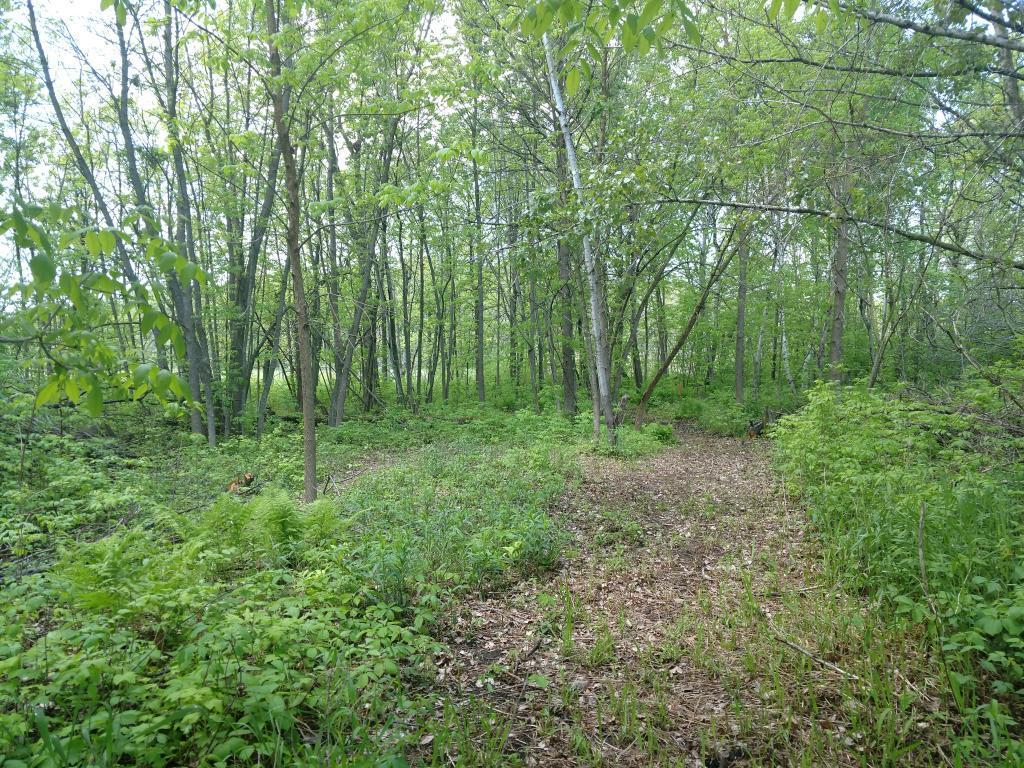 XXX US Highway 169 Property Photo - Garrison, MN real estate listing