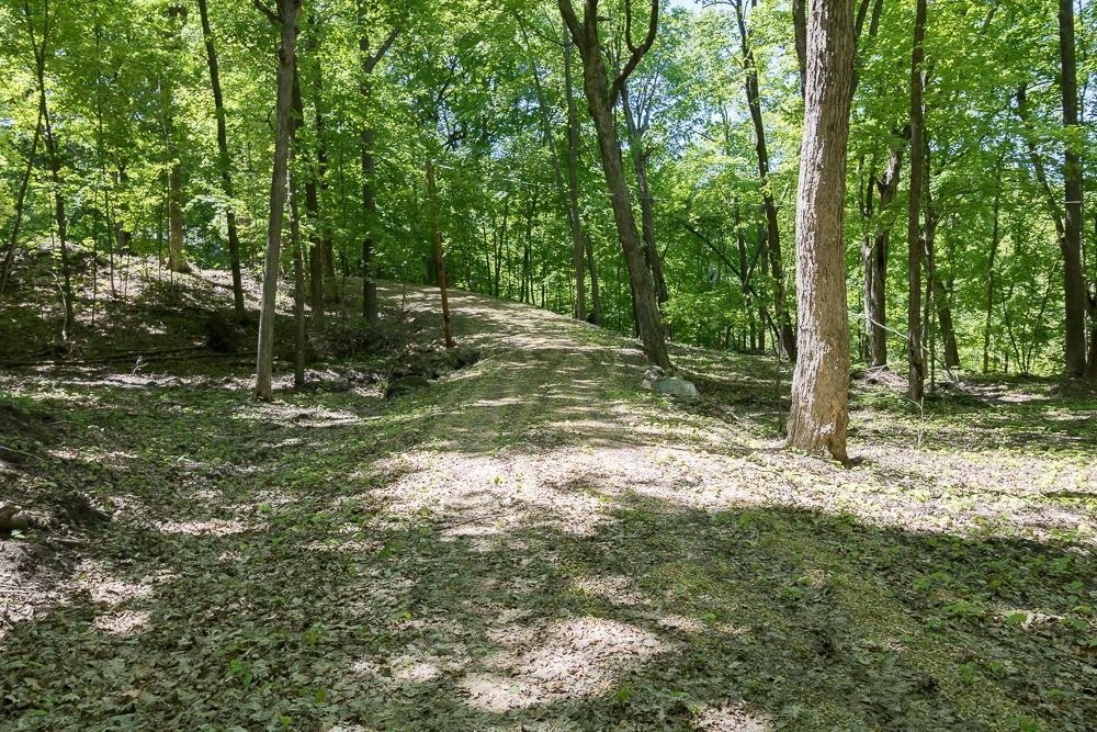 xxx Forest Property Photo - Balsam Lake, WI real estate listing