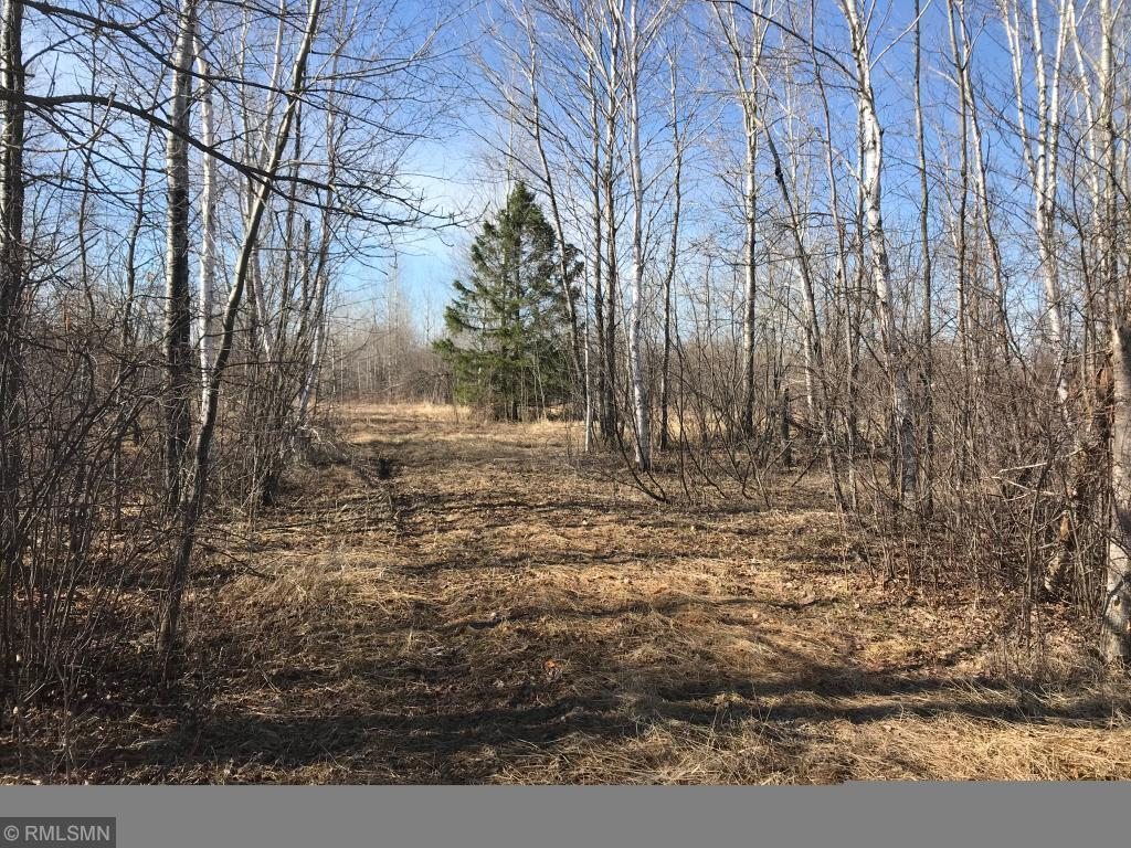 XXX 430th Street Property Photo - Tamarack, MN real estate listing