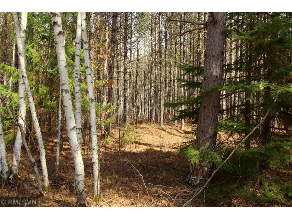 XXX County Road 36 Property Photo - Crosby, MN real estate listing