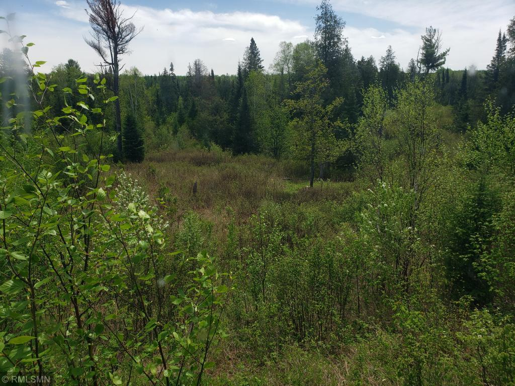 280 McAlpine Property Photo - Two Harbors Unorg. Terr., MN real estate listing