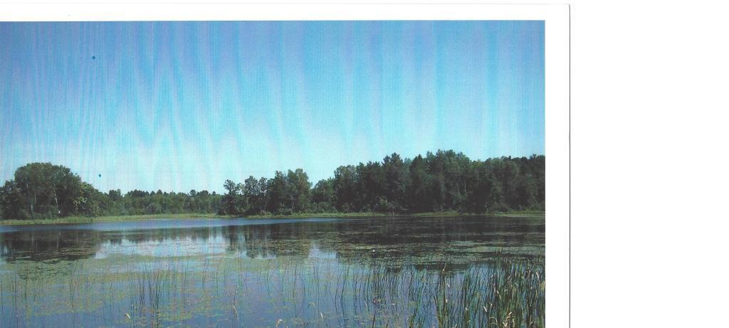 xxx Fools Lake Drive Property Photo - Two Inlets Twp, MN real estate listing