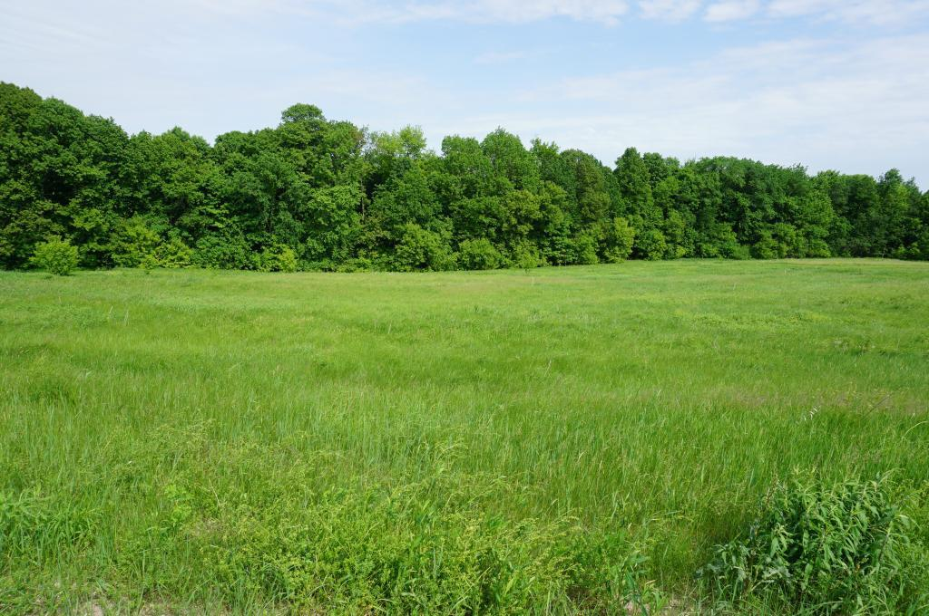 Lot 2 549th Property Photo - Ellsworth, WI real estate listing