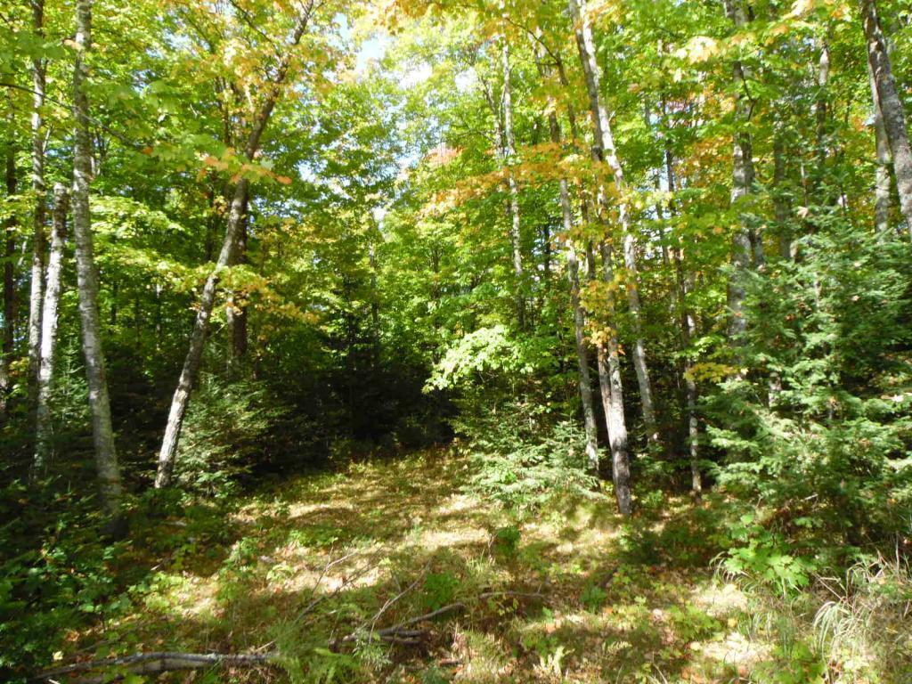 Lot 0 Pison Road Property Photo - Solon Springs, WI real estate listing