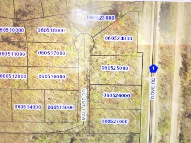 Lot 75 Mallard Drive Drive Property Photo - Cushing Twp, MN real estate listing