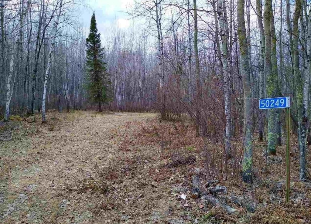 50249 County Road 309 Property Photo - Bigfork, MN real estate listing