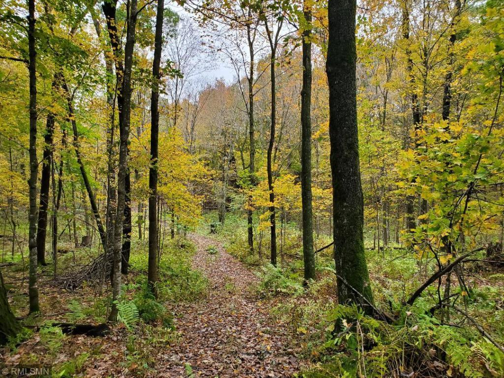 Lot 24 XXX 134TH Property Photo - Amery, WI real estate listing
