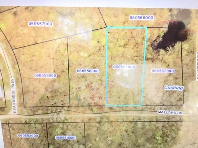 Lot 1 and 2 Mallard Property Photo - Cushing Twp, MN real estate listing