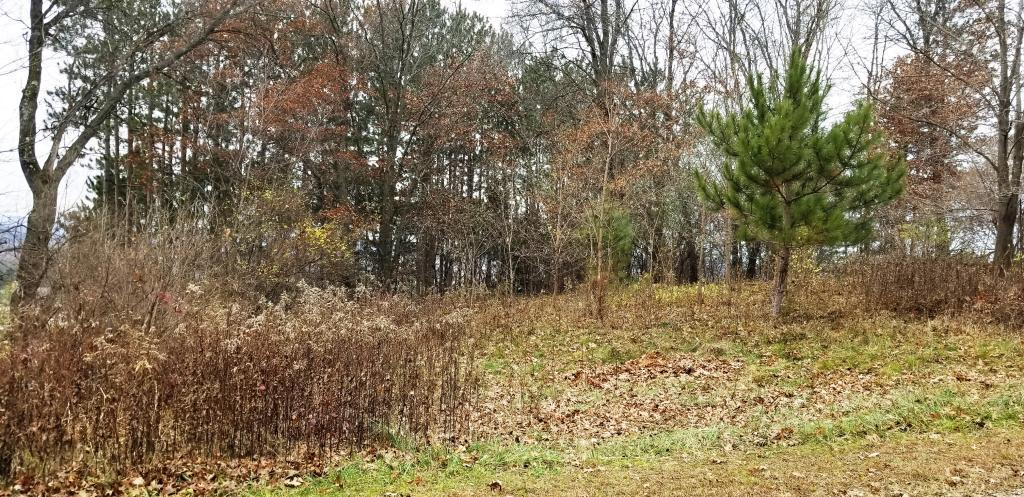 Lot 1 Fairway Ave Property Photo - Ettrick, WI real estate listing