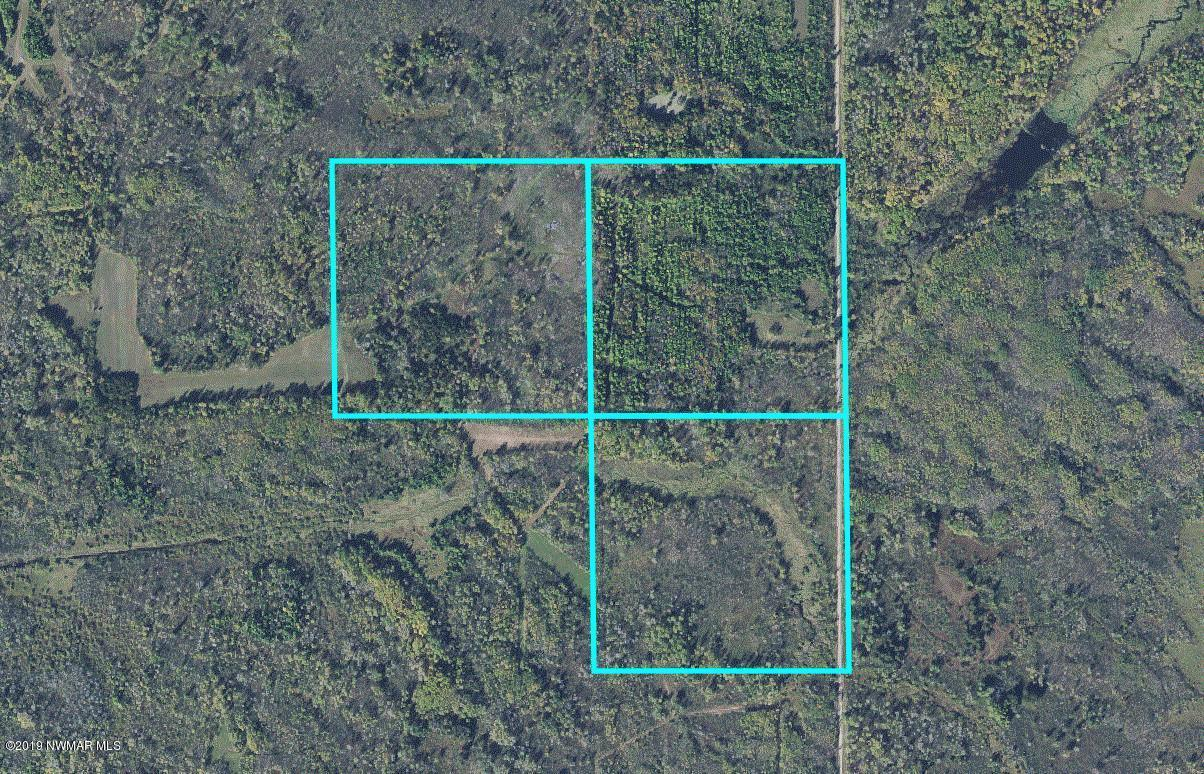 TBD 70th NW Property Photo - Williams, MN real estate listing