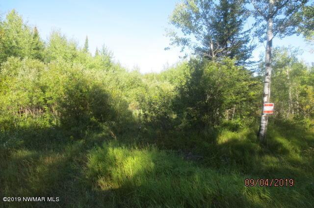 48th NW Property Photo - Williams, MN real estate listing