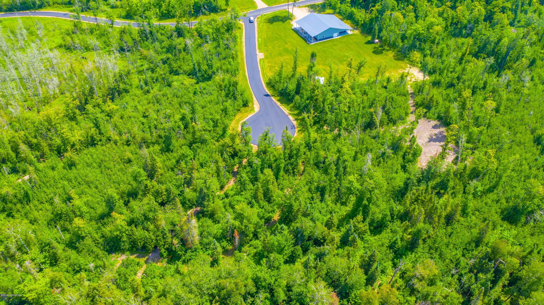 TBD Lake Andrusia NE Property Photo - Bemidji, MN real estate listing