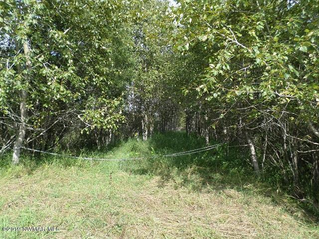 Parts of S-14,15, 22, 23, T-155, R-37 Property Photo - Grygla, MN real estate listing