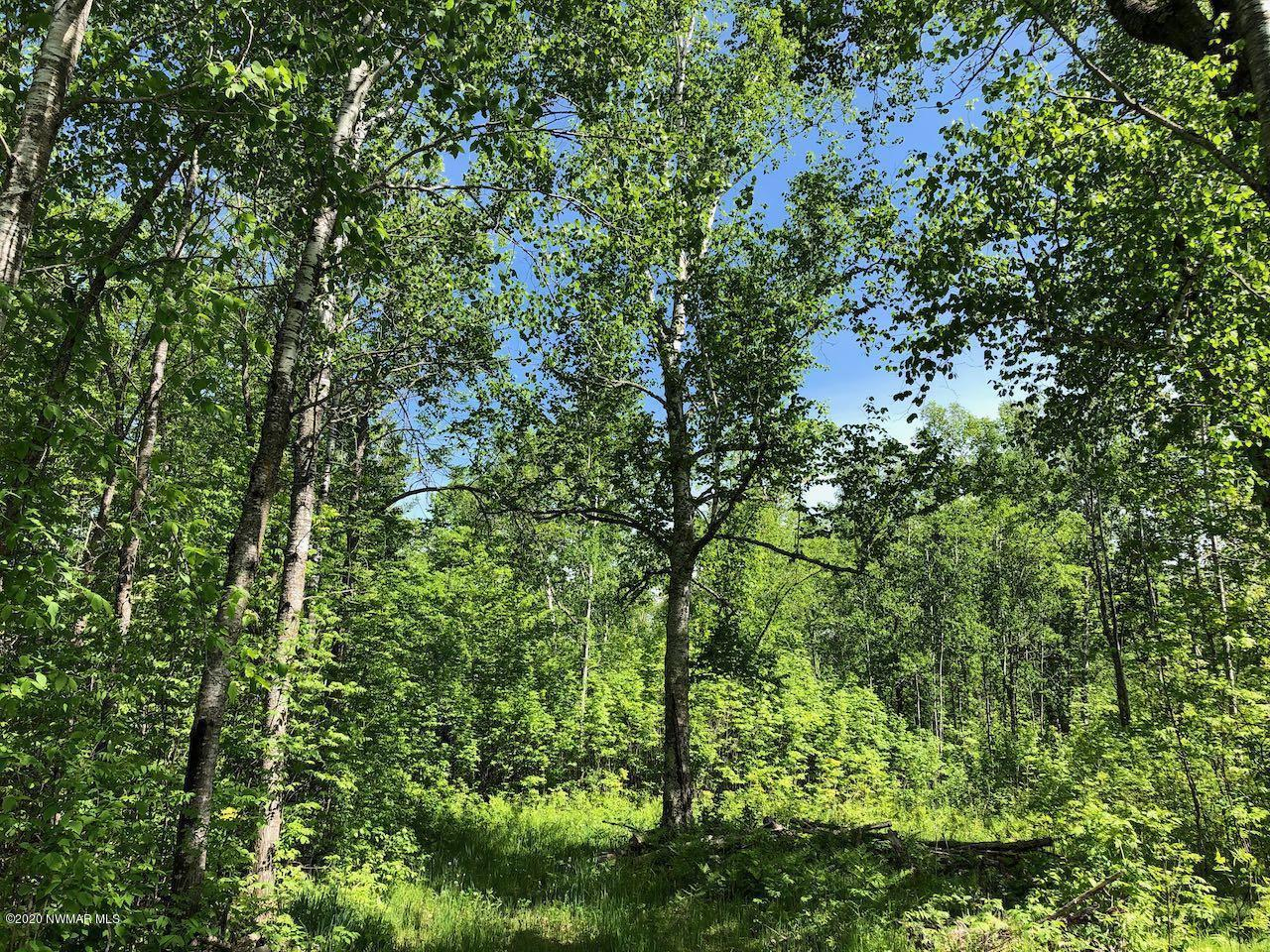 20a CR 13 Property Photo - Blackduck, MN real estate listing
