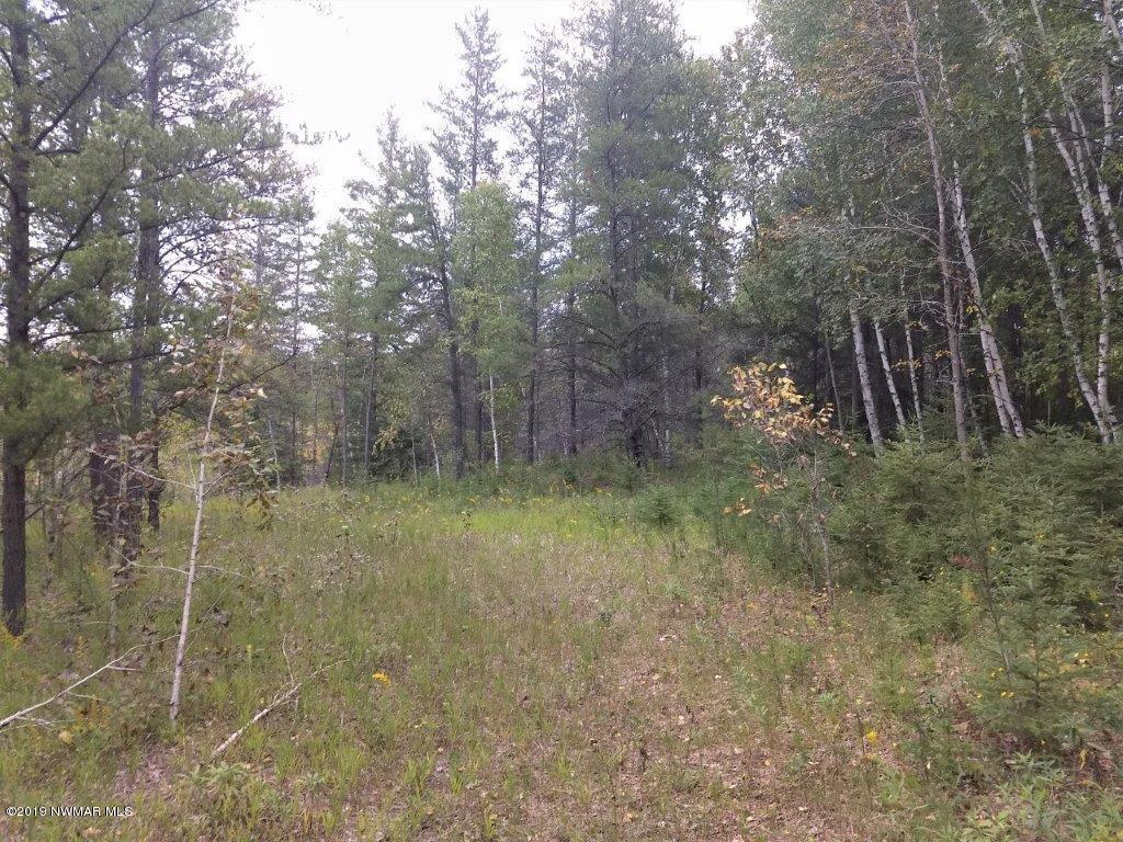 TBD 350th Property Photo - Bagley, MN real estate listing
