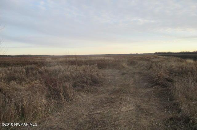 County Road 2 Property Photo - Williams, MN real estate listing
