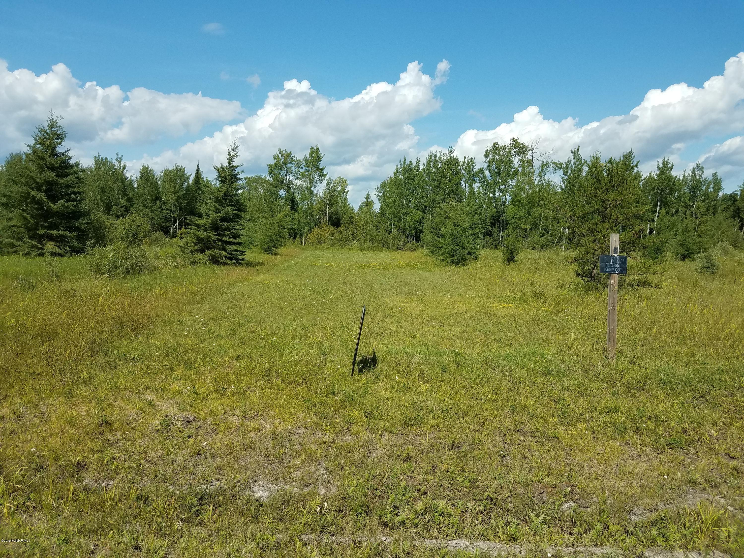 TBD Town Rd 112 Property Photo - Birchdale, MN real estate listing