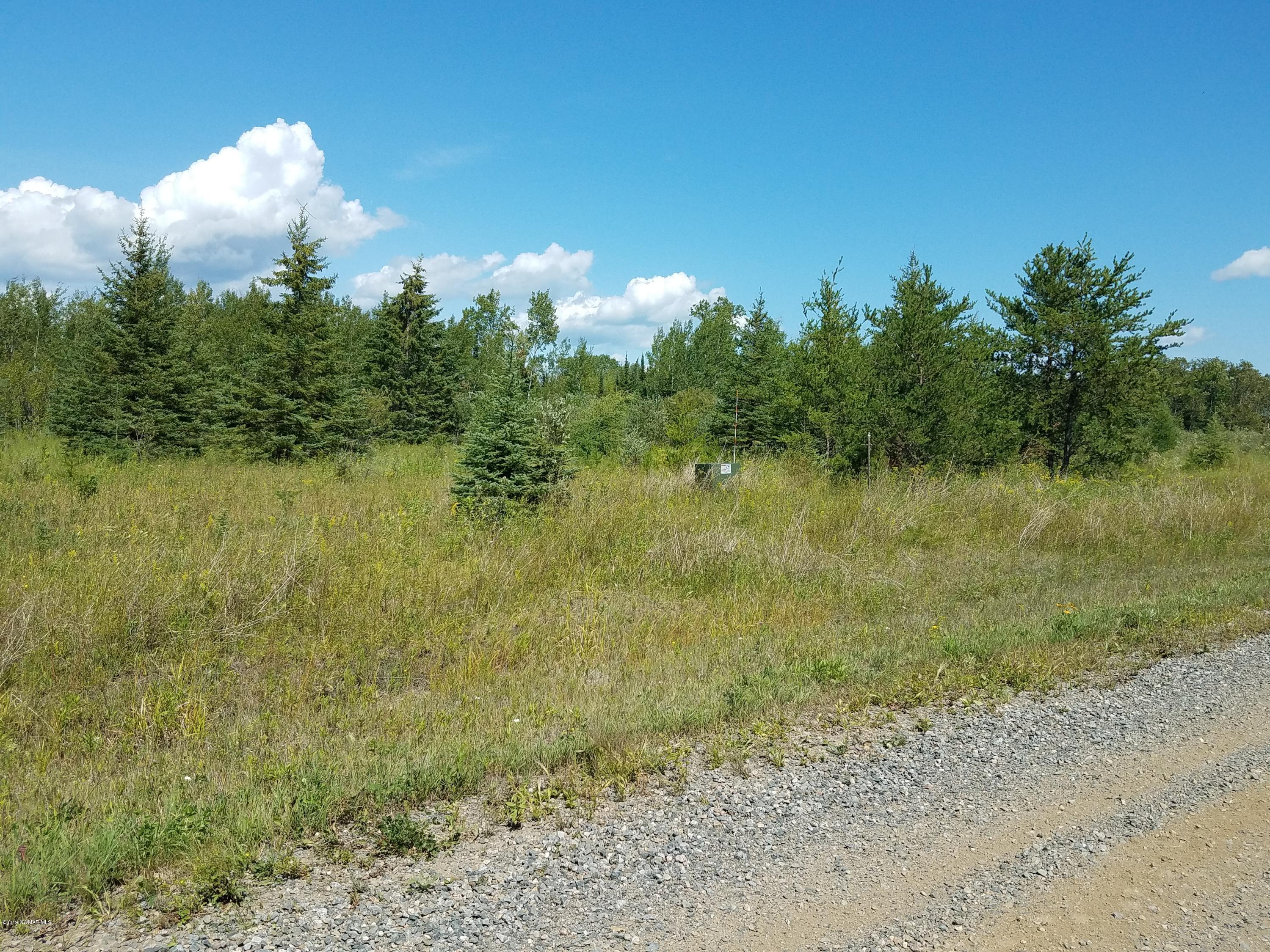 TBD Town Road 112 Property Photo - Birchdale, MN real estate listing