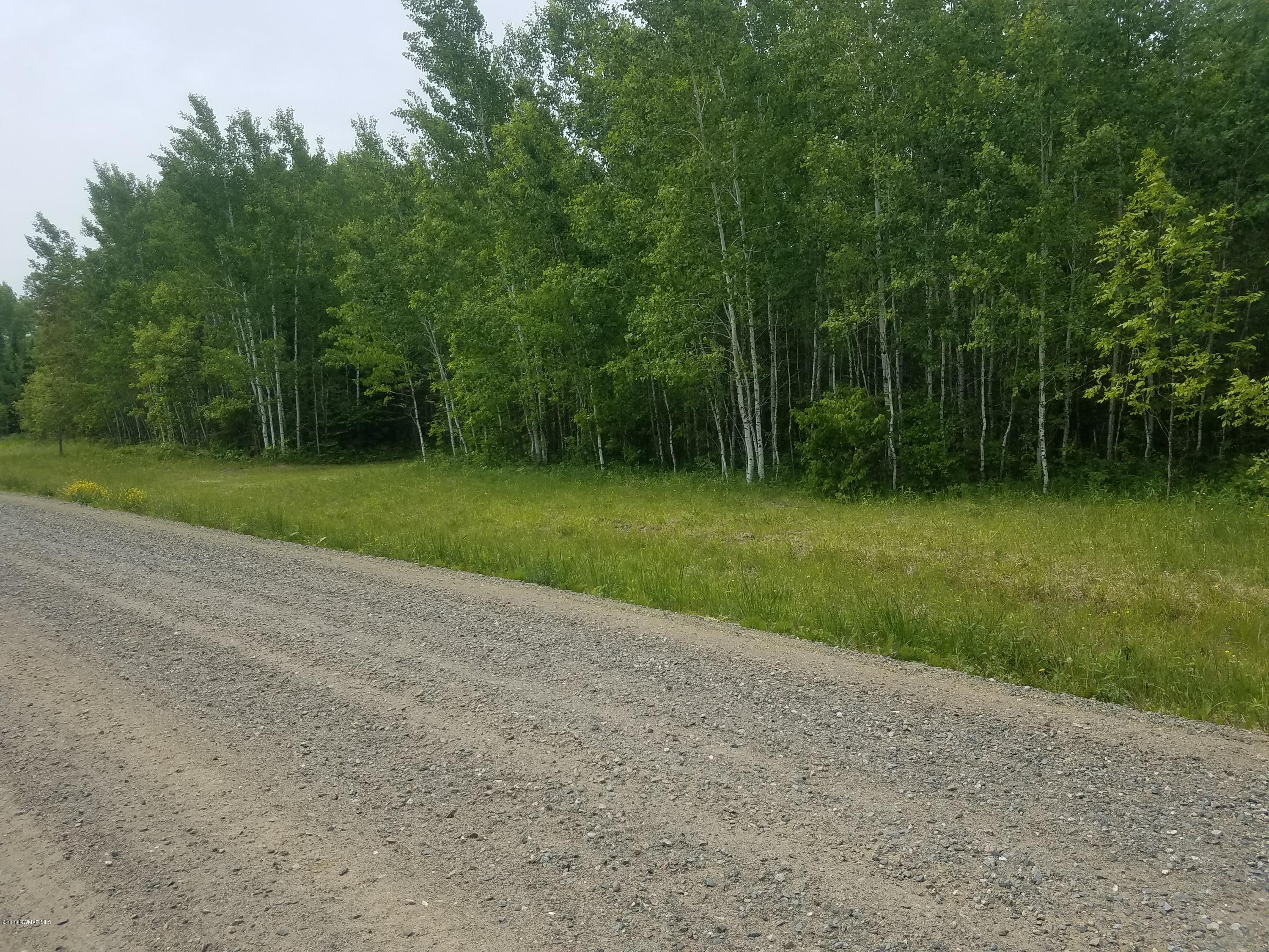 TBD Town Rd. 112 Property Photo - Birchdale, MN real estate listing