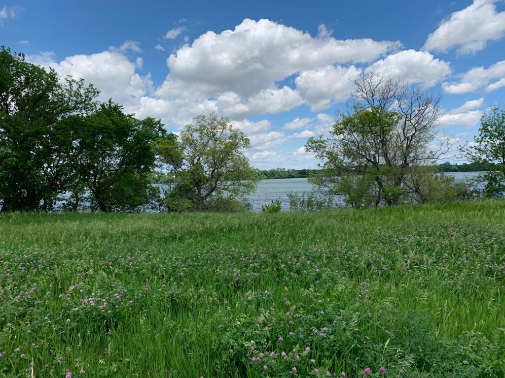 Lot 4 257th Ave Property Photo - Stony Brook Twp, MN real estate listing