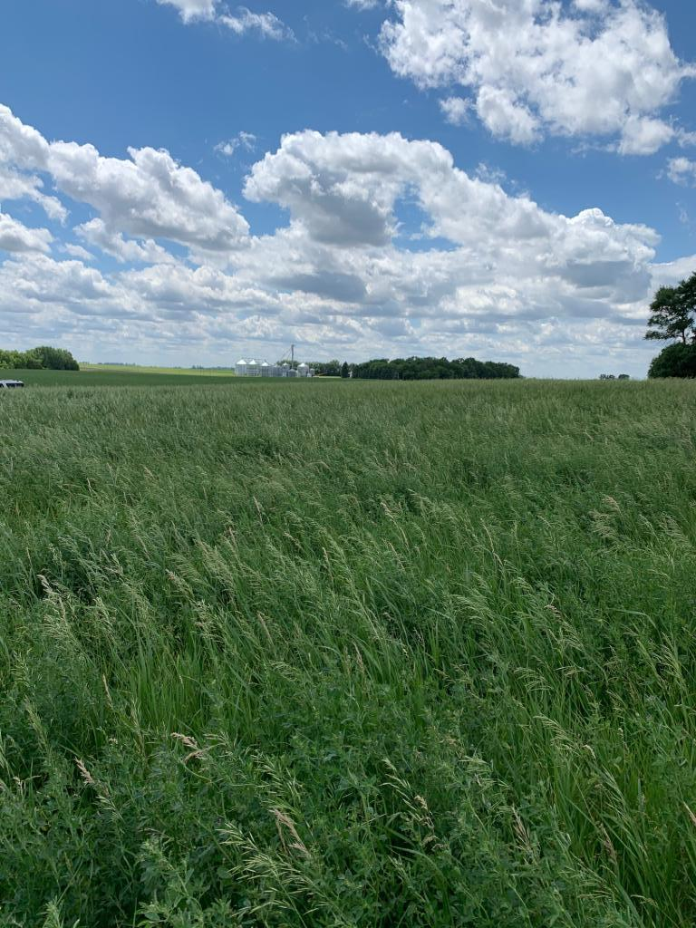 Lot 7 257th Ave Property Photo - Stony Brook Twp, MN real estate listing