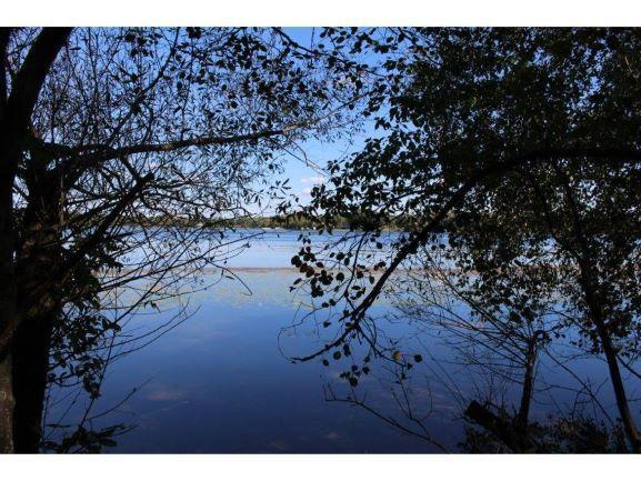 17757 Alexander Point Road Property Photo - Cold Spring, MN real estate listing