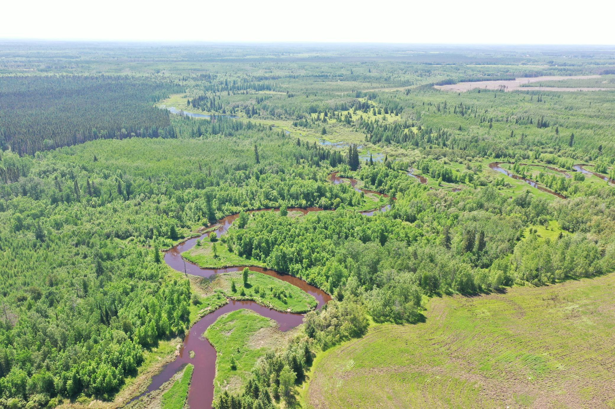TBD County Rd 3 W. Property Photo - Ray, MN real estate listing
