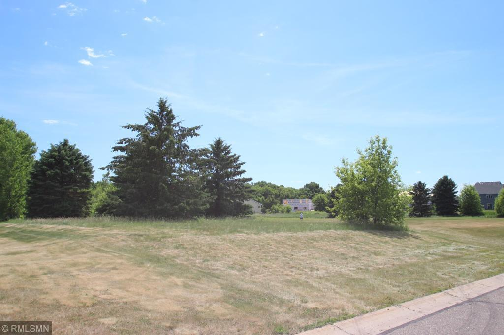 905 Beech S Property Photo - Annandale, MN real estate listing