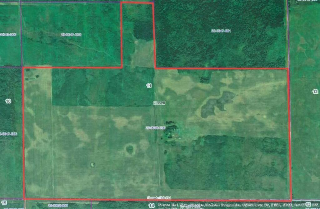 TBD County Rd 134 Property Photo - Linsell Twp, MN real estate listing