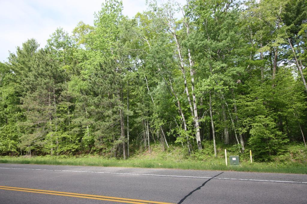 XXX County Road 4 Property Photo - Pequot Lakes, MN real estate listing