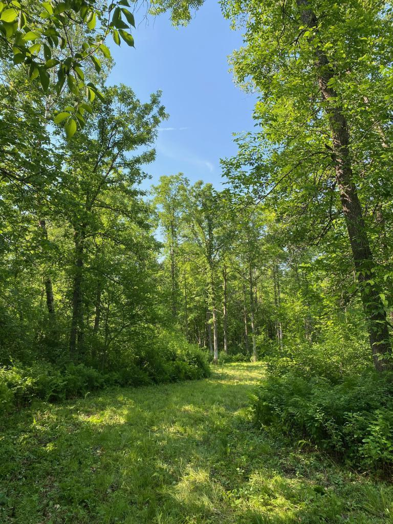 1st Add Cuyuna Hills Real Estate Listings Main Image