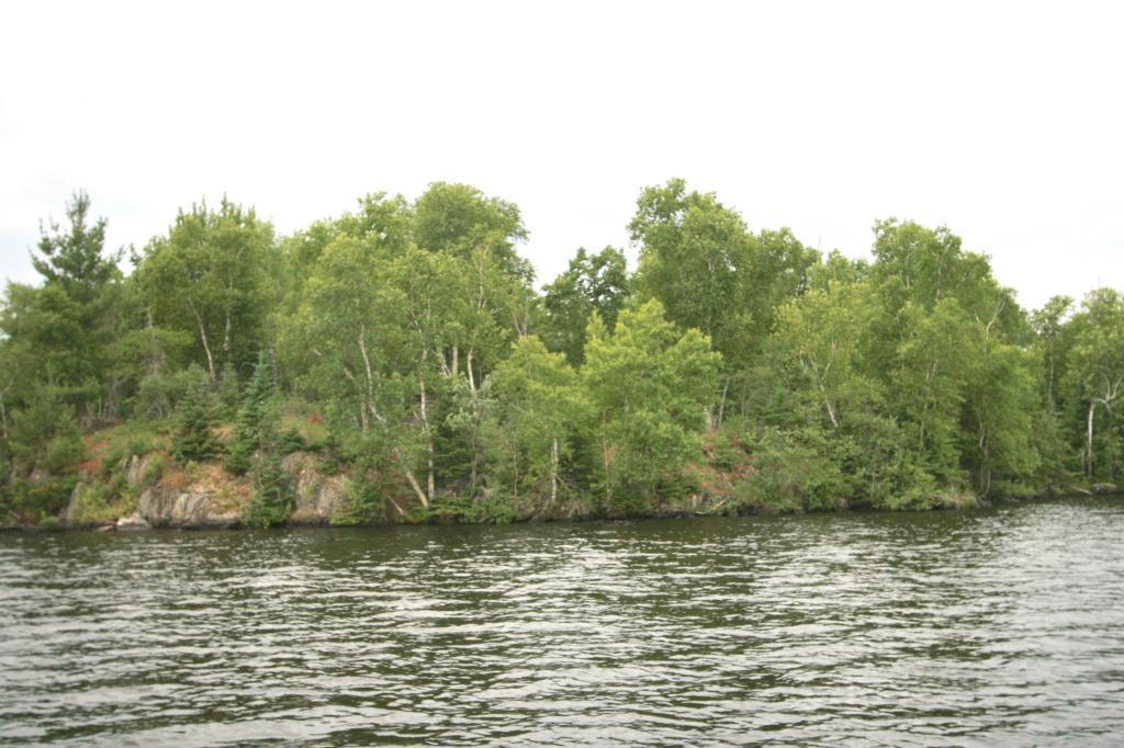 Parcel 2 & 3 Anderson Isle Property Photo - Cook, MN real estate listing