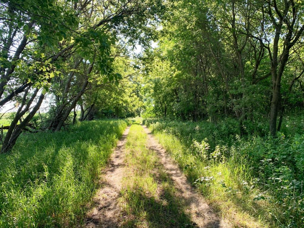 TBD 135th Street NE Property Photo - Atwater, MN real estate listing