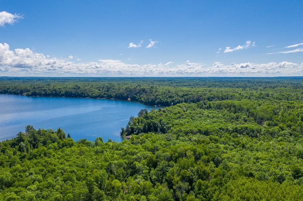 Parcel B Deer Lane Property Photo - Fifty Lakes, MN real estate listing