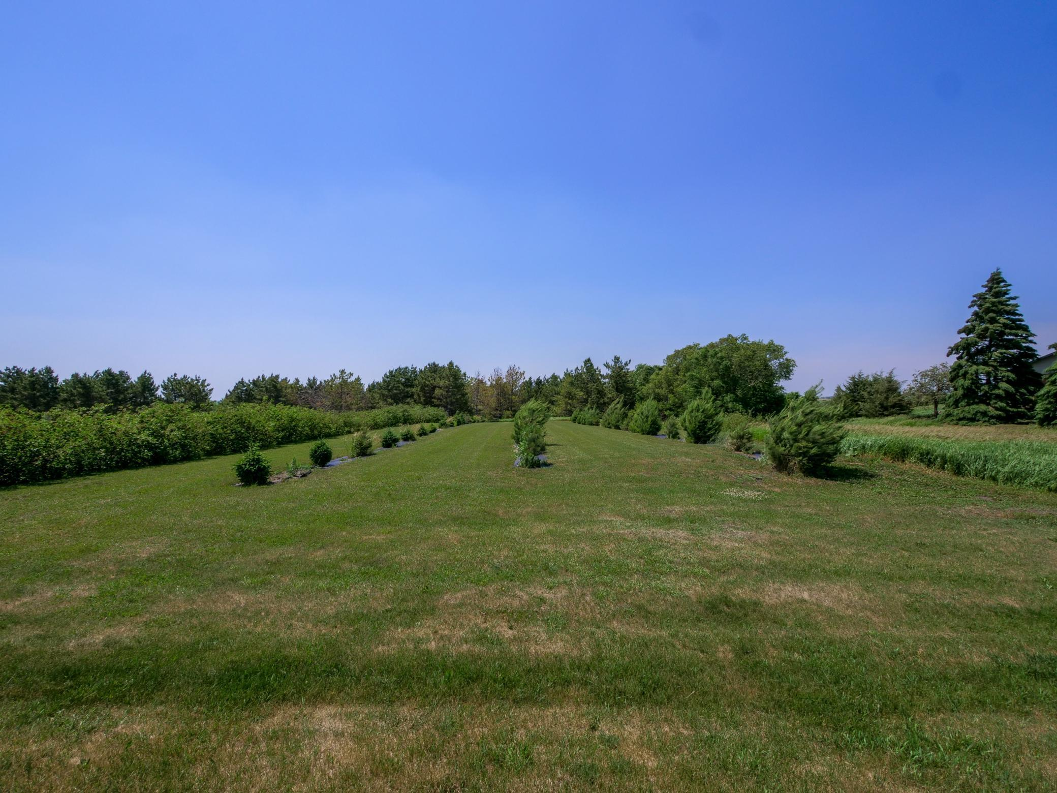 36990 County Road 18 Property Photo - Starbuck, MN real estate listing