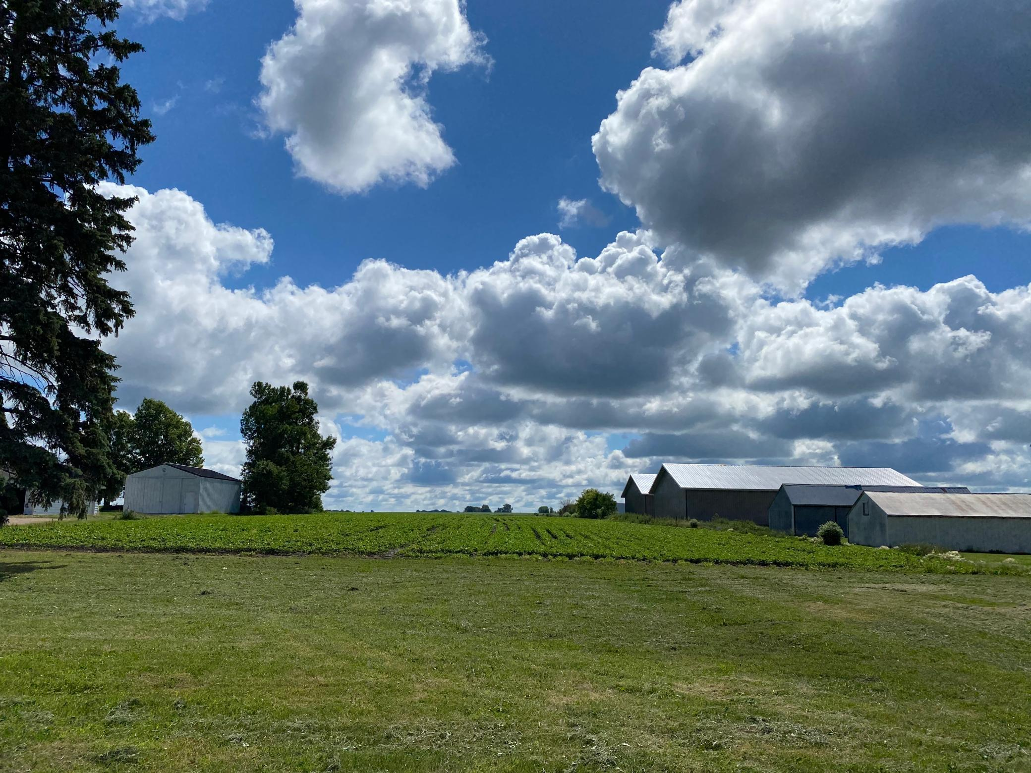 0 0 Property Photo - Worthington, MN real estate listing