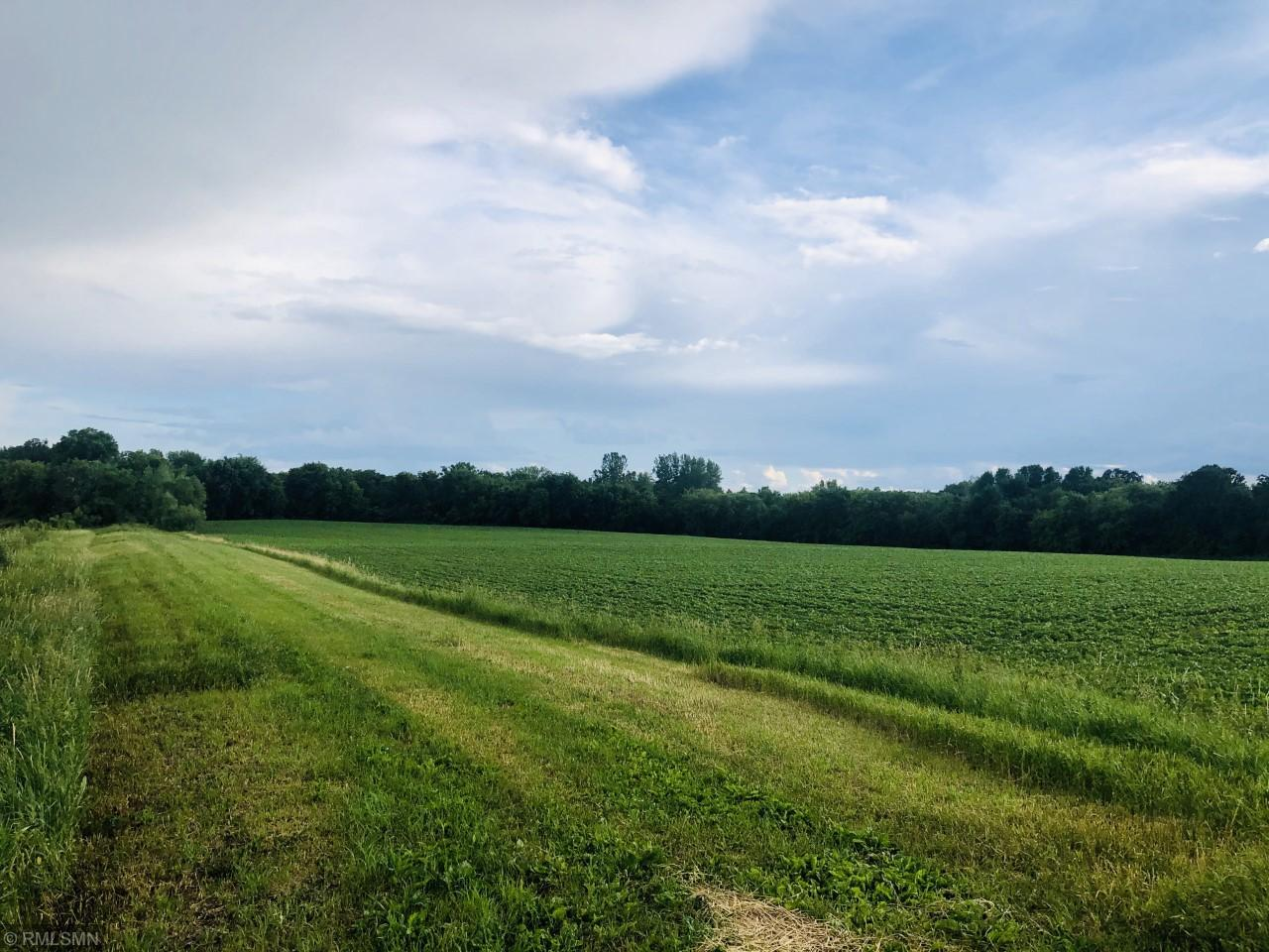 xxxx 20th St NE Property Photo - Annandale, MN real estate listing
