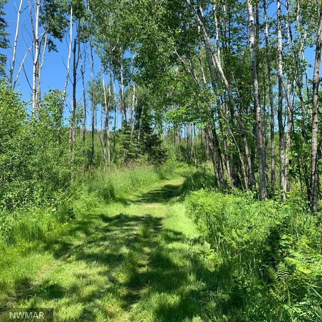 TBD 230th Property Photo - Bear Creek Twp, MN real estate listing