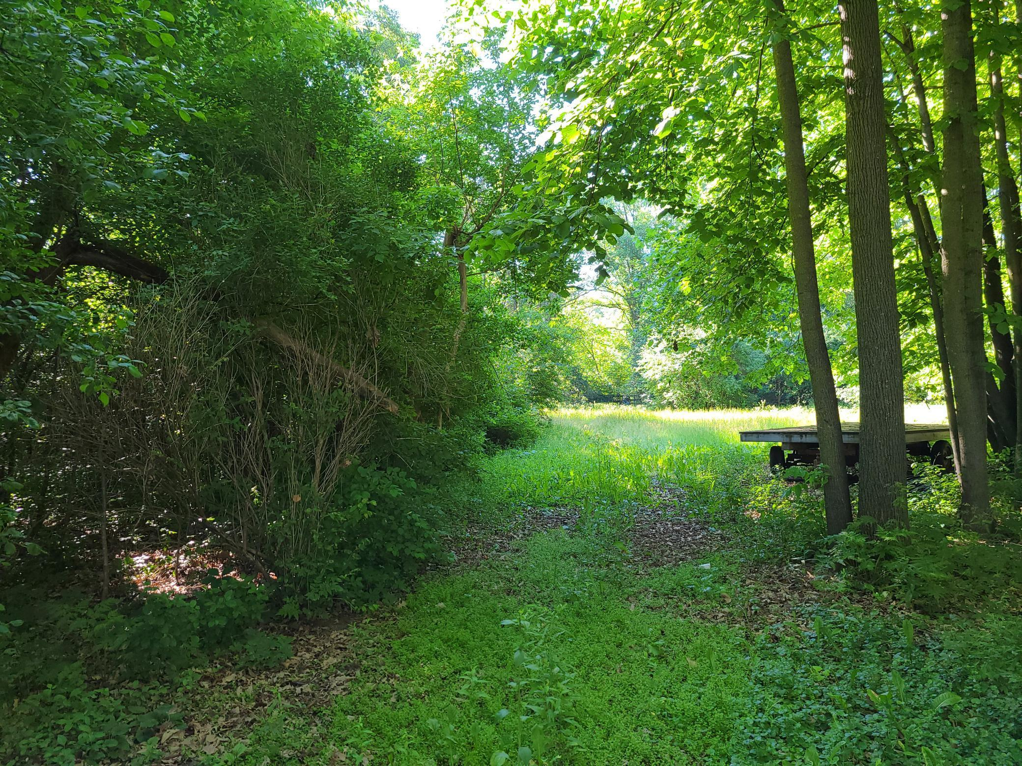 0 Hwy 8 Property Photo - Beaver Twp, WI real estate listing